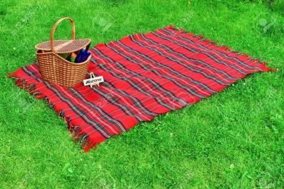 Picnic blanket.