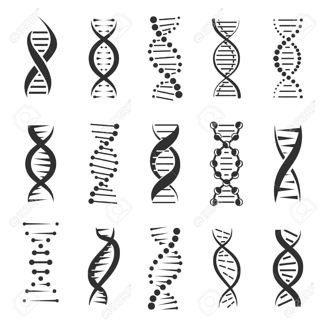 dna helix a genetic