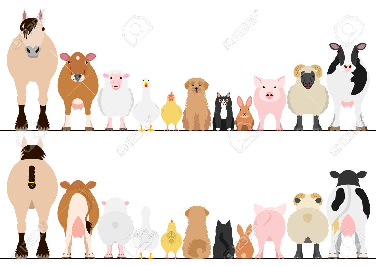 hight resolution of farm animals border set front view and rear view stock vector 69224152
