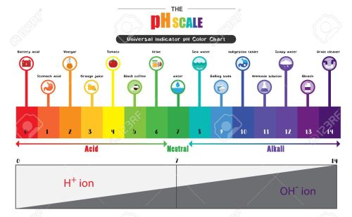 small resolution of the ph scale universal indicator ph color chart diagram acidic alkaline values common substances vector illustration