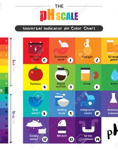 The ph scale universal indicator color chart diagram acidic alkaline values common substances vector illustration also rh rf