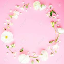 Floral Round Frame Of White Flowers On Pink Background Flat Stock Photo Picture And Royalty Free Image Image 97554961