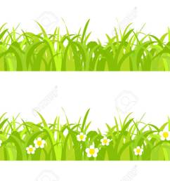 seamless spring grass on a white background with flowers stock vector 41309200 [ 1300 x 839 Pixel ]