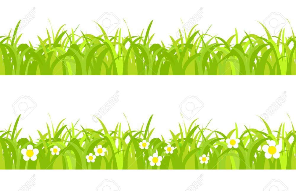 medium resolution of seamless spring grass on a white background with flowers stock vector 41309200