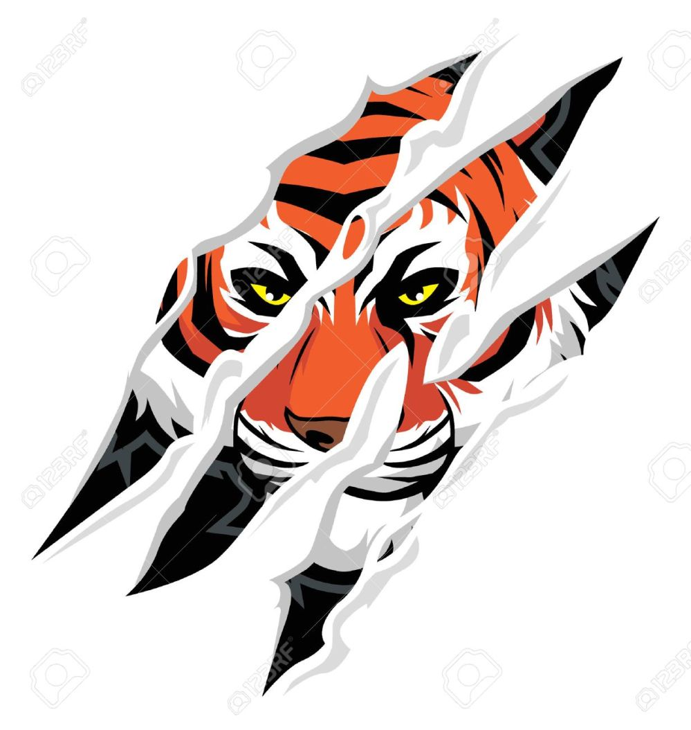 medium resolution of tiger claw rip mark with tiger face behind it