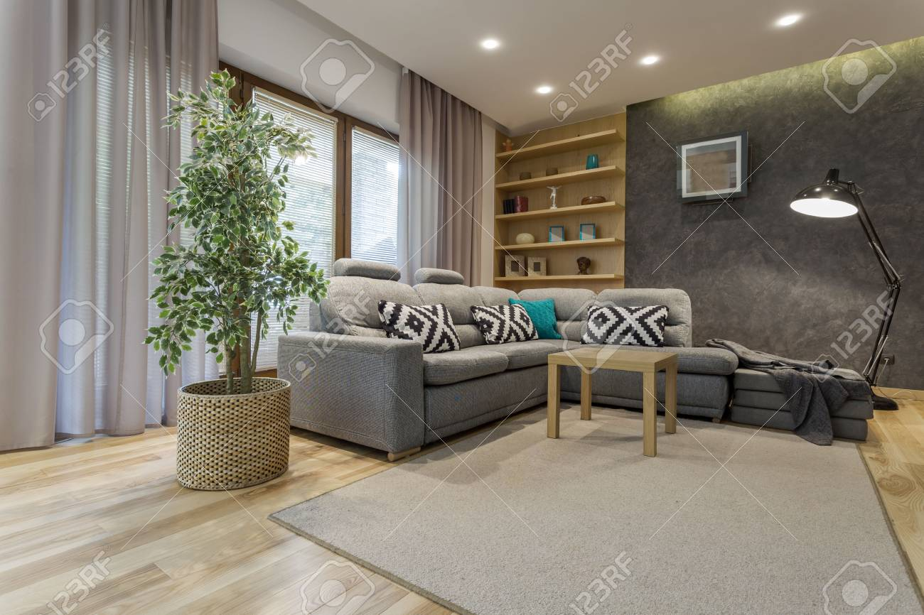 shot of a comfortable living room interior with a comfy gray