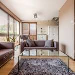 Modern Little Living Room Arrangement And Glass Coffee Table