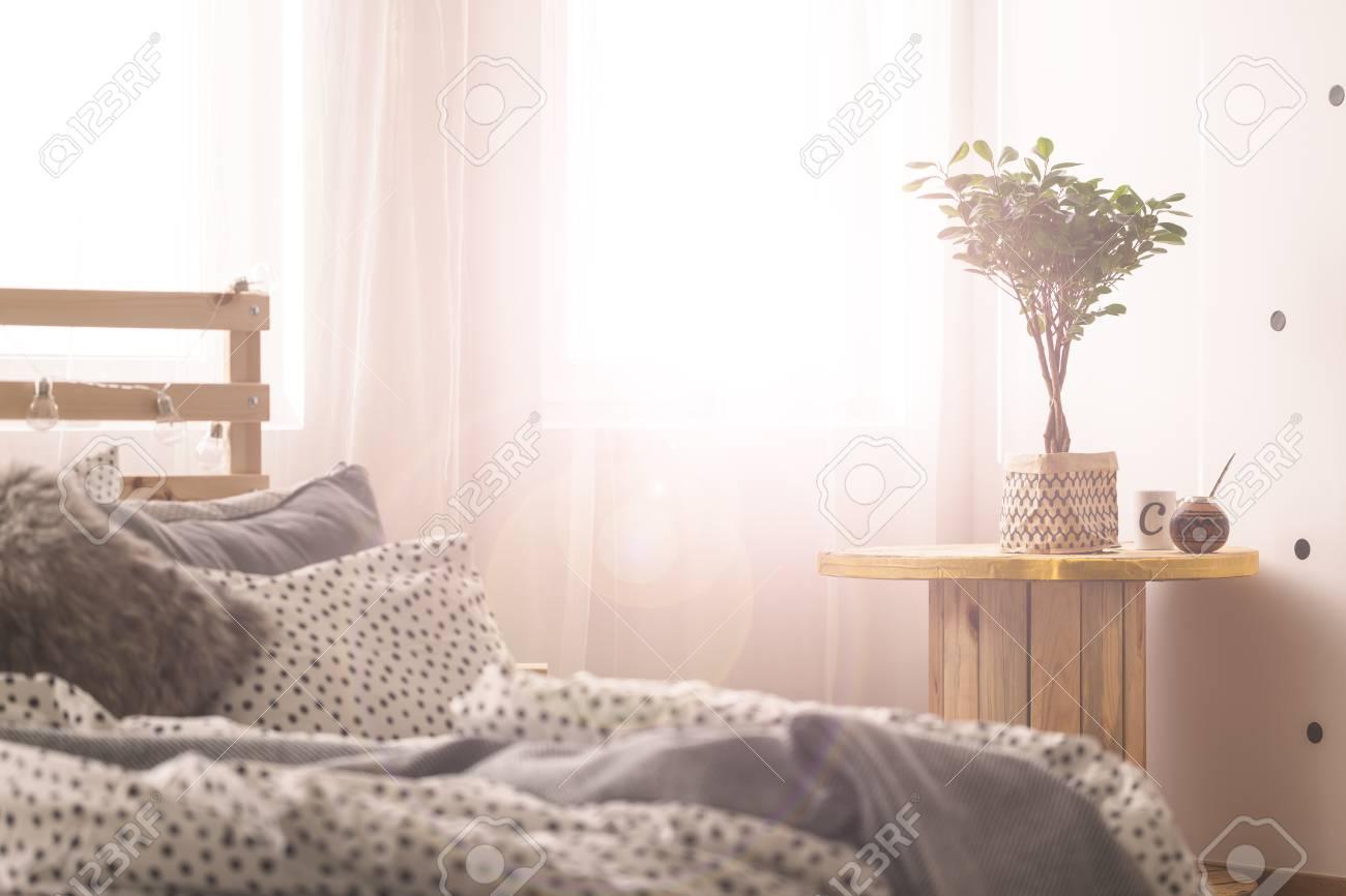 Pflanze Schlafzimmer Schlafzimmer Pflanzen Dekoration Bett Spiegel