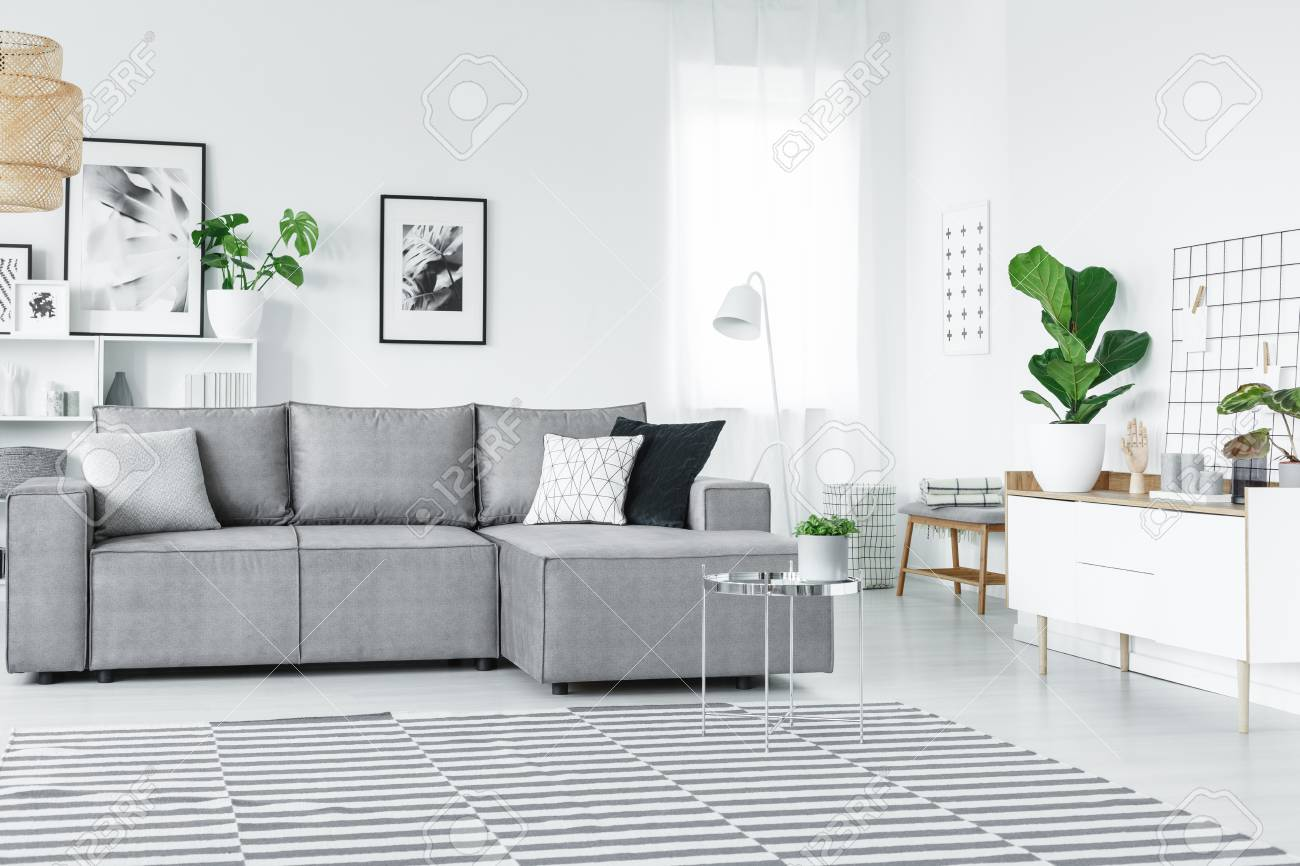 white and grey flat