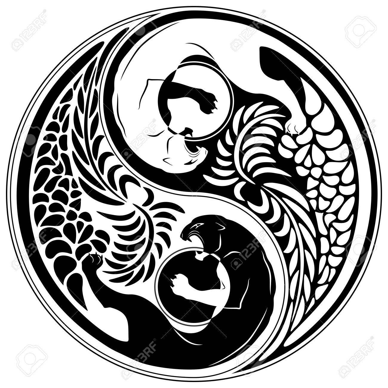 yin yang wild cat