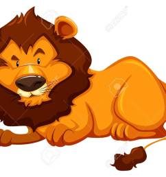 sitting lion on white background stock vector 39163442 [ 1300 x 957 Pixel ]