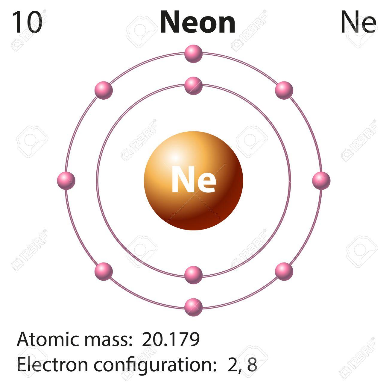 neon atom diagram sheep brain superior view representation of the element illustration royalty free stock vector 44786612