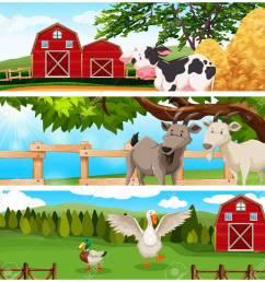farm animals on the farmland illustration stock vector 48833509 [ 1300 x 1246 Pixel ]