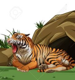 tiger sleeping in front of the cave illustration stock vector 83389463 [ 1300 x 651 Pixel ]