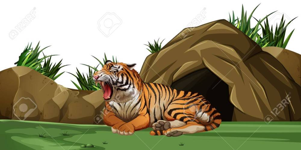 medium resolution of tiger sleeping in front of the cave illustration stock vector 83389463