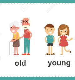 opposite english words showing old and young vector illustration stock vector 100177298 [ 1300 x 1083 Pixel ]