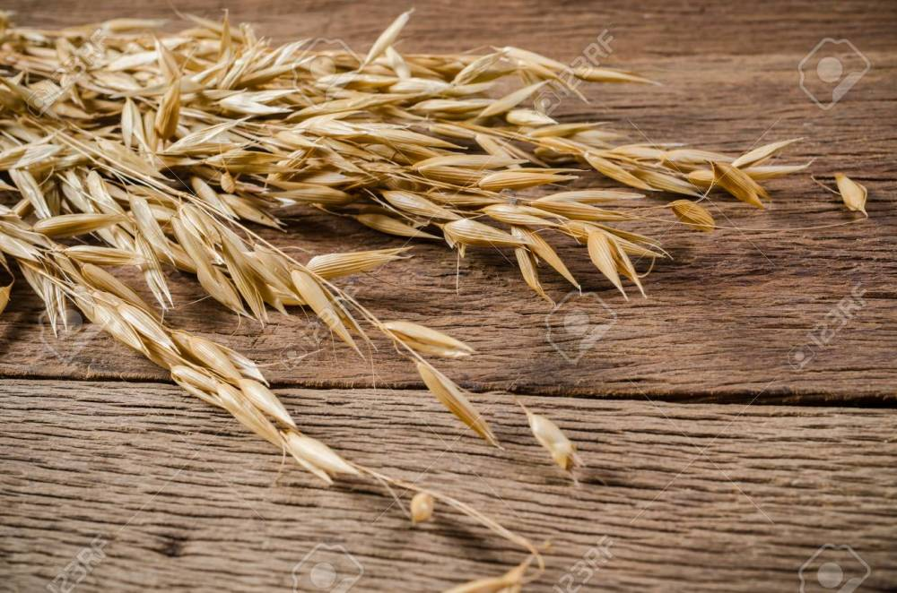 medium resolution of ear of oat grain on wooden board background agriculture product stock photo 83435522