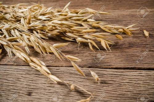 small resolution of ear of oat grain on wooden board background agriculture product stock photo 83435522