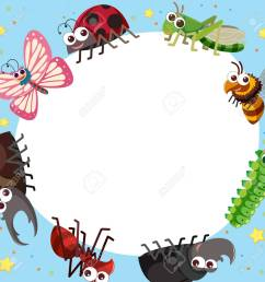 border template with different types of bugs illustration stock vector 88900828 [ 1300 x 1300 Pixel ]