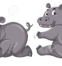 two cute hippopotamus on white background illustration stock vector 111830467 [ 1300 x 654 Pixel ]