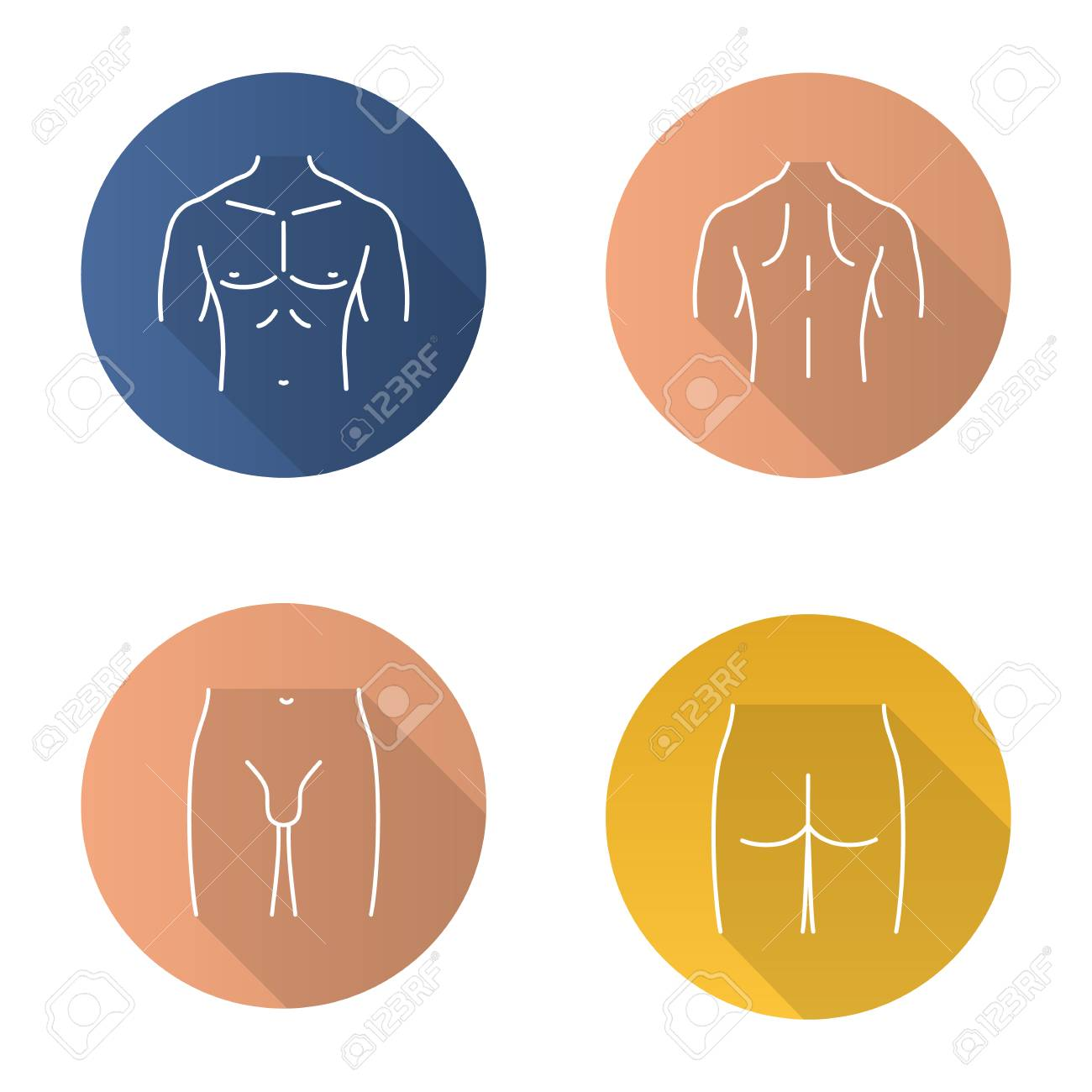 hight resolution of male body parts flat linear long shadow icons set muscular chest back groin
