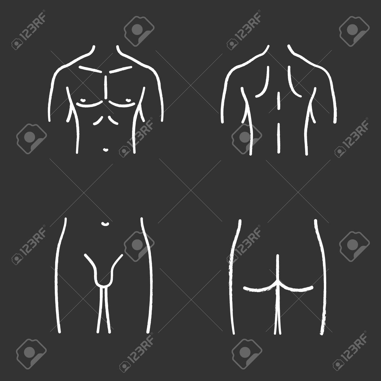 hight resolution of male body parts chalk icons set muscular chest back groin butt