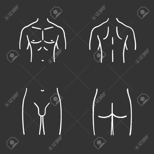 small resolution of male body parts chalk icons set muscular chest back groin butt