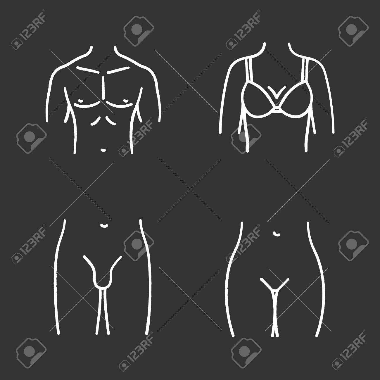 hight resolution of human body parts chalk icons set muscular man s chest female breast bikini zone