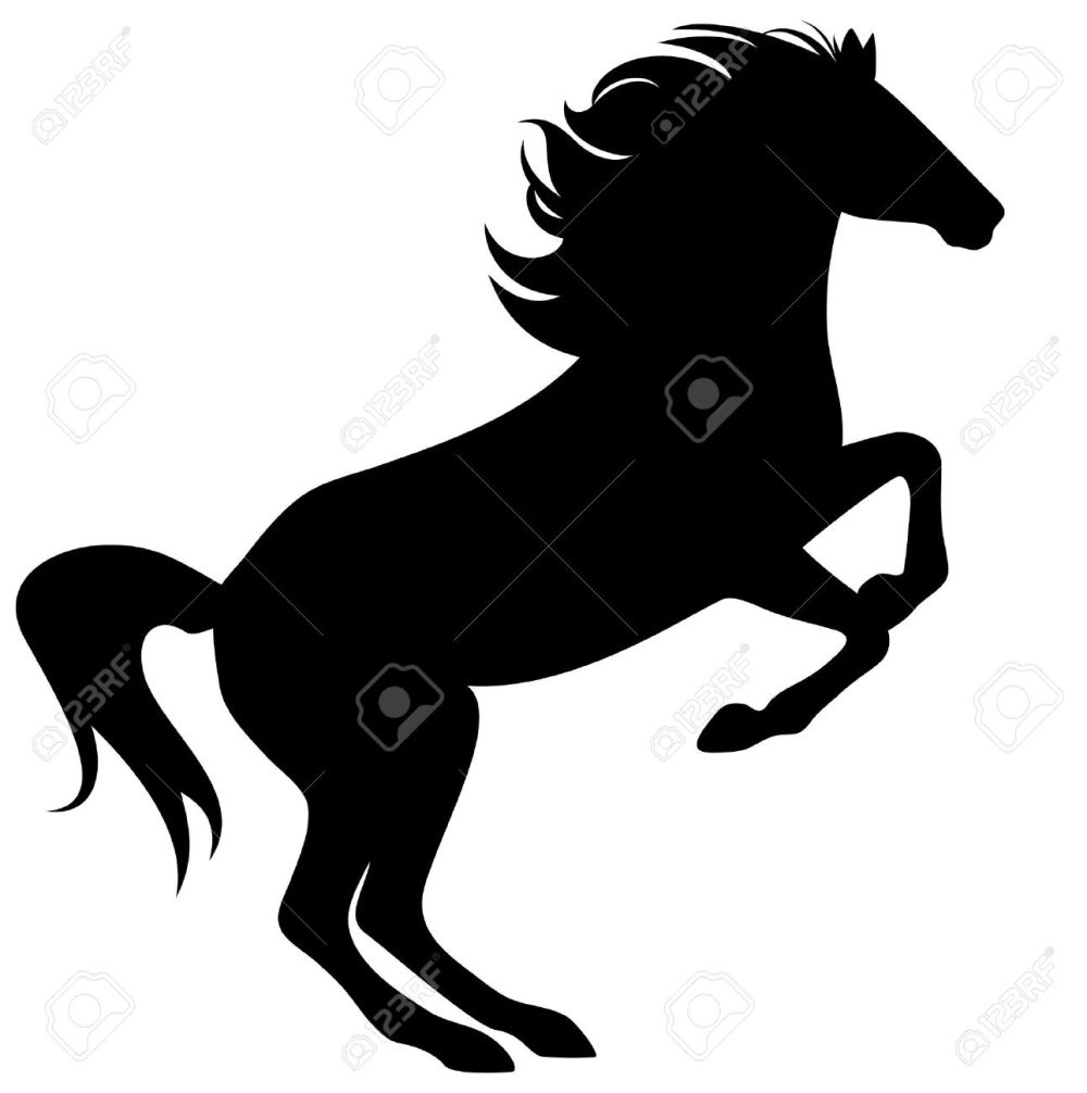 medium resolution of rearing horse fine silhouette black over white stock vector 15475465