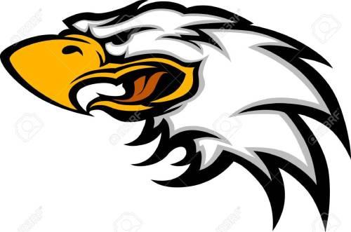 small resolution of eagle mascot head graphic stock vector 10311673