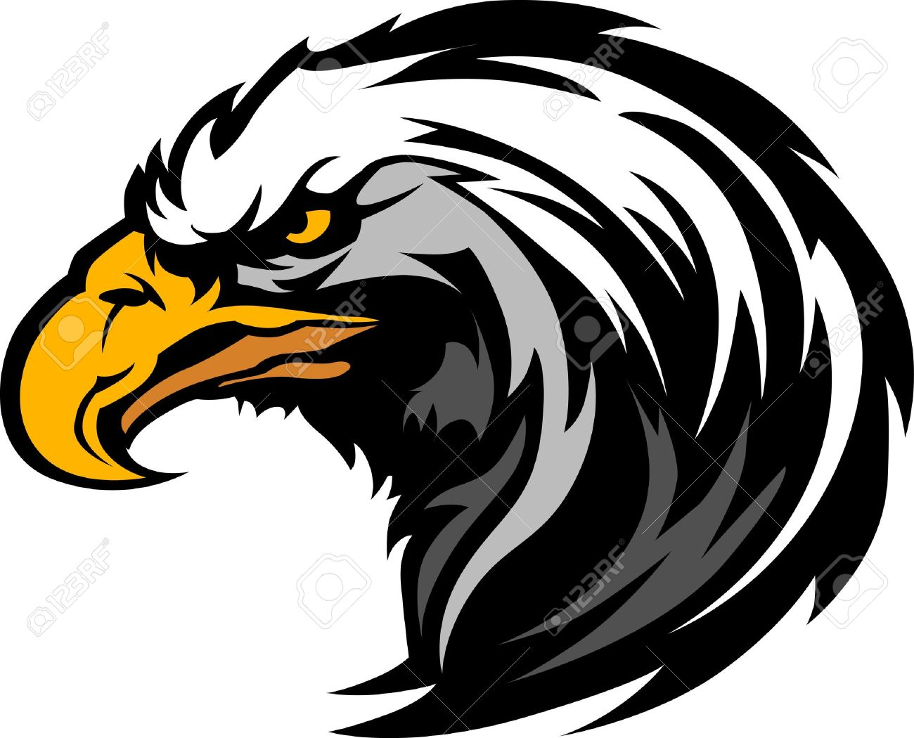 hight resolution of graphic head of an eagle mascot stock vector 10457685