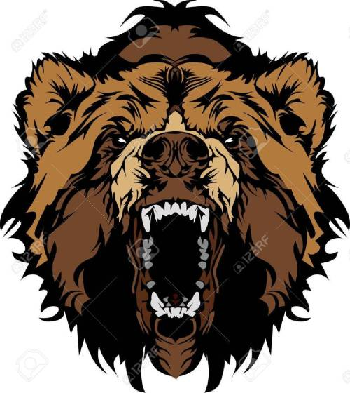 small resolution of grizzly bear mascot head vector graphic stock vector 10743804