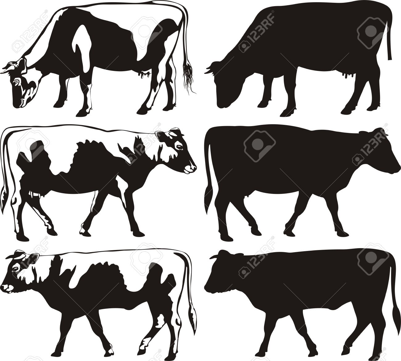 hight resolution of cow and bull silhouettes