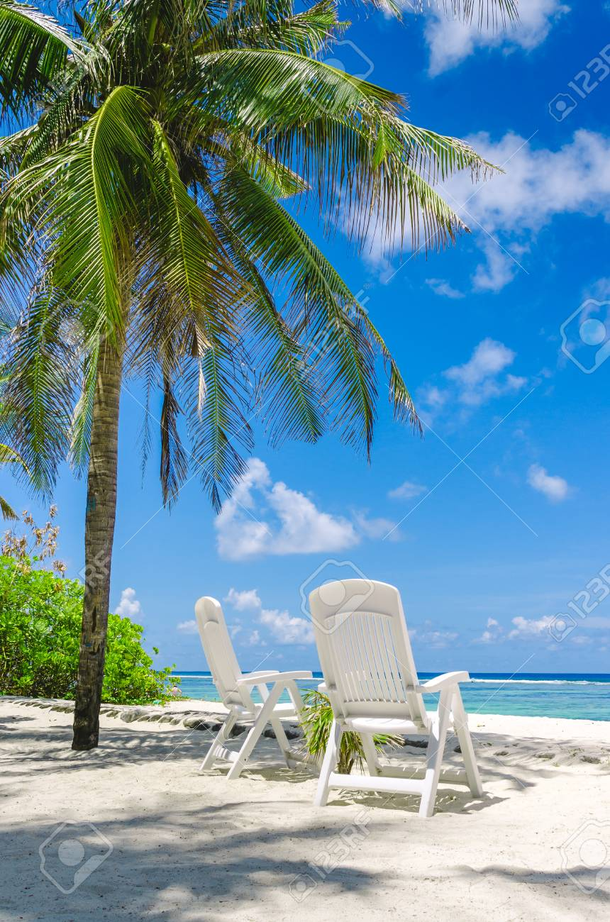 perfect beach chairs adirondack style uk two on tropical white sand in maldives stock photo