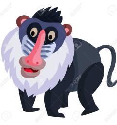 baboon stock vector 32010133 [ 1300 x 1300 Pixel ]