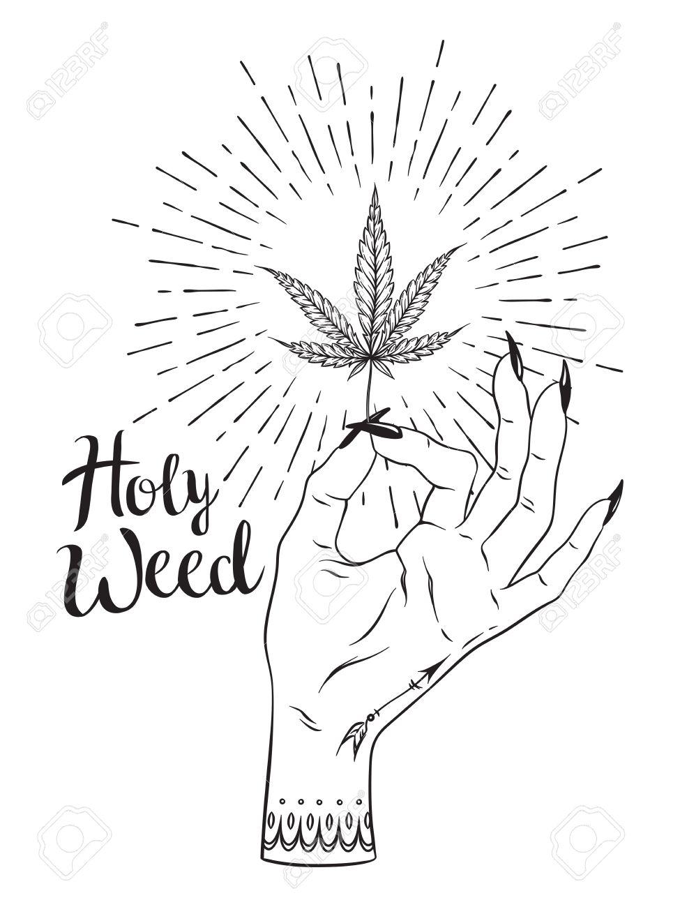Hoja De Marihuana En Mano Femenina Aislado Sobre Fondo Blanco