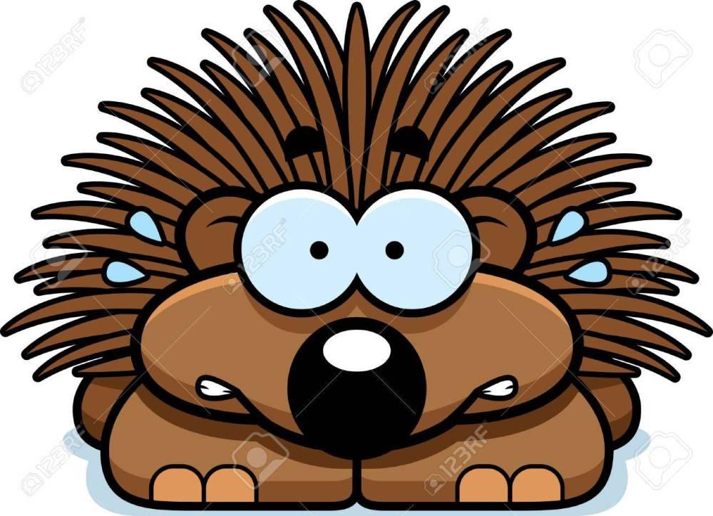 medium resolution of a cartoon illustration of a little porcupine looking nervous stock vector 42751061