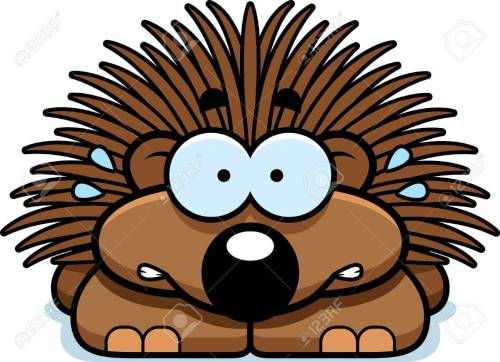 small resolution of a cartoon illustration of a little porcupine looking nervous stock vector 42751061