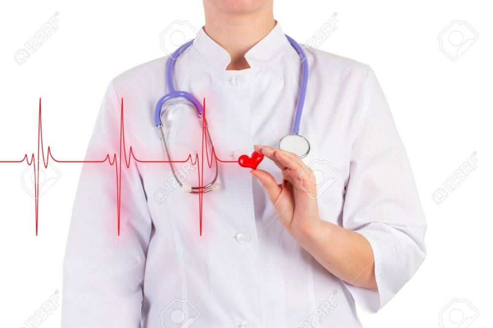 medium resolution of stock photo the doctor is holding a toy heart diagram of heart isolated background