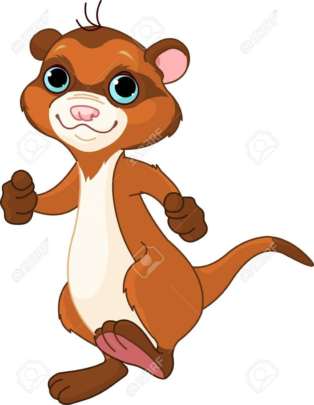 hight resolution of foto de archivo ilustraci n de lindo ferret caminar poco