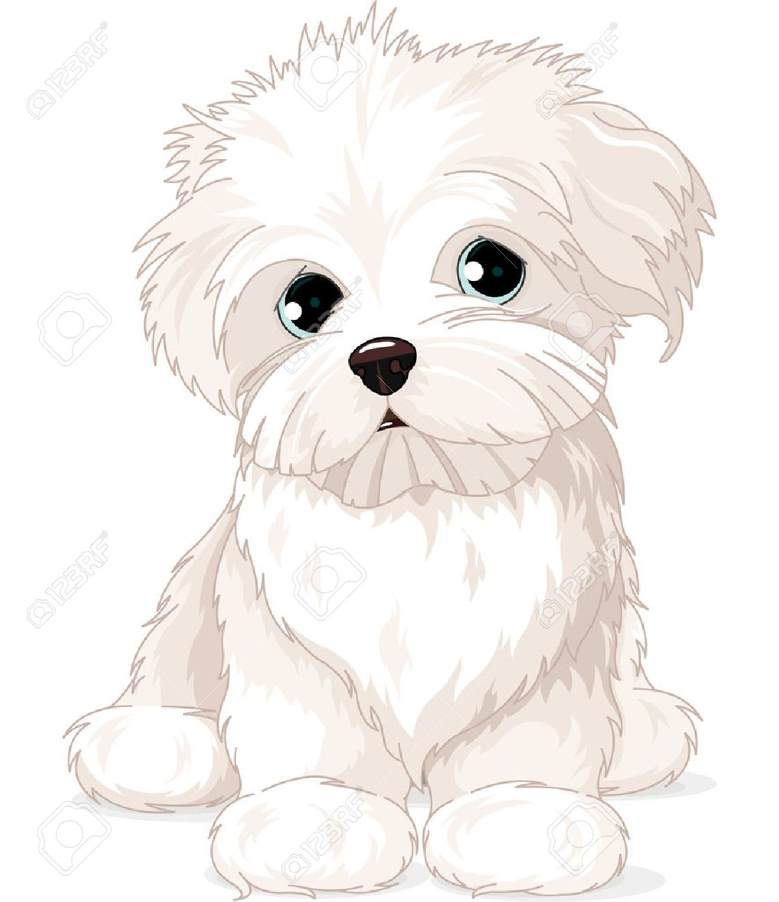 hight resolution of clipart maltese puppy dog stock vector 26016826