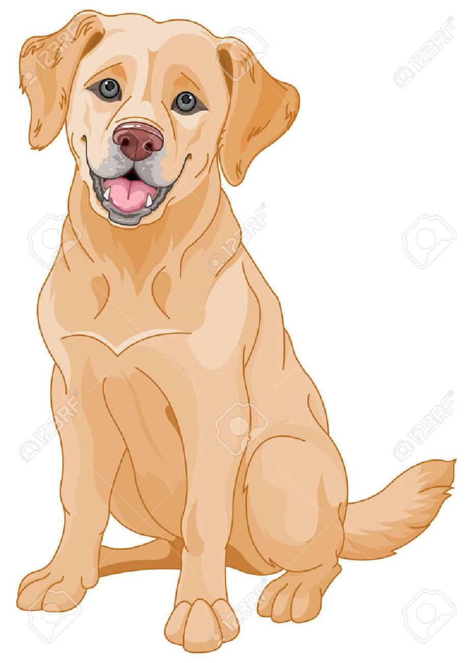 hight resolution of illustration of cute golden retriever dog stock vector 46230245