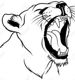 lioness head hand drawn illustration stock vector 6511673 [ 1300 x 1189 Pixel ]