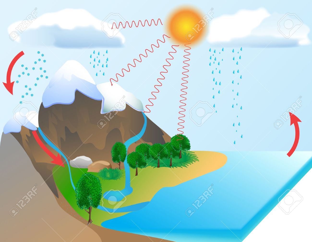 hight resolution of water cycle diagram the sun which drives the water cycle heats stock photo water