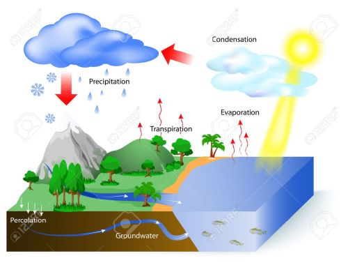 small resolution of vector water cycle diagram the sun which drives the water cycle heats water in oceans and seas water evaporates as water vapor into the air labeled