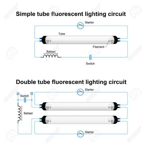 small resolution of single and double tube fluorescent lighting circuit simple vector diagram of fluorescent lamp diagram of fluorescent lamp