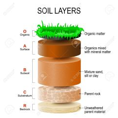 Horizon Diagram Soil Formation Drag Race Car Wiring Layers And Horizons Is A Mixture Of Plant Residue