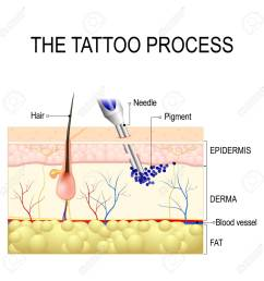 make a tattoo how does it work tattooing process close up stock vector [ 1300 x 1300 Pixel ]