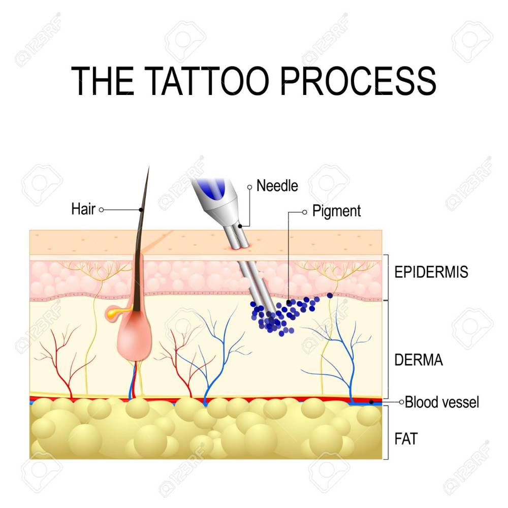 medium resolution of make a tattoo how does it work tattooing process close up stock vector
