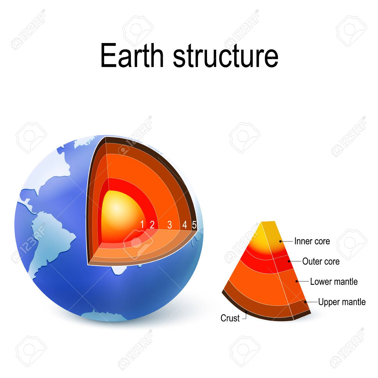 hight resolution of vector earth internal structure cross section and layers of the planet crust upper mantle lower mantle outer core and inner core vector